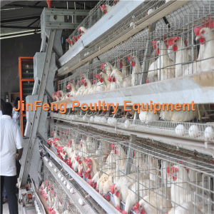 Solid Environmental Cheap Hotsale Automatic Poultry Farm Layer Chicken Cages pictures & photos