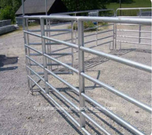 China Australian Standard Galvanized Cattle Yard Panel Wholesaler pictures & photos