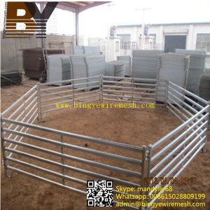 Livestock Farm Fence Cattle Panel pictures & photos
