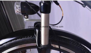 250W 28 Inch Litium Battery Disc Brake E Bicycle with Magnesium Wheels pictures & photos