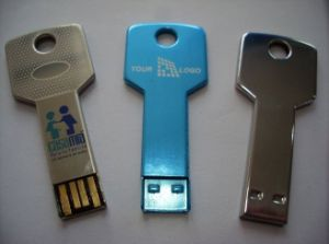 OEM Logo Key Shape Slim USB Flash Drive Series pictures & photos