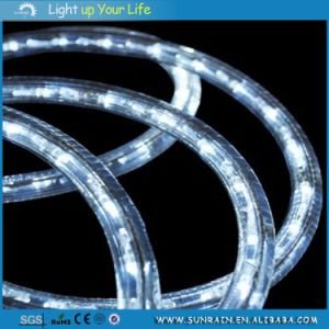 Top Quality LED Light Ribbon Design pictures & photos