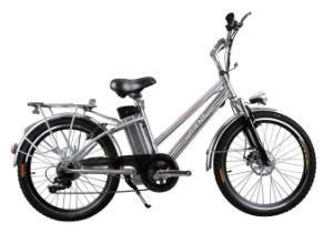 SGS E-Bike (EB06-24)