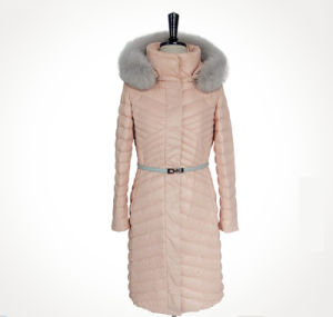 New Fashion Customized Outdoor Woman Down Jacket with Hood, Winter Coat pictures & photos