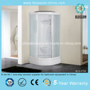 ABS Tray Matt Glass Complete Shower Cabin with CE (BLS-9704) pictures & photos