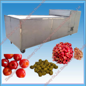 Professional Supplier of Olive Pitting Machine pictures & photos