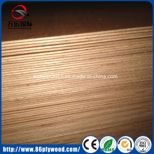 Pure Wood Mahogany/Okoume Veneered Poplar Sandwich Panel pictures & photos