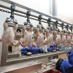 Automatic Poultry Slaughtering Machine for Broiler Chicken pictures & photos