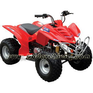 125cc ATV Quad for Adults pictures & photos