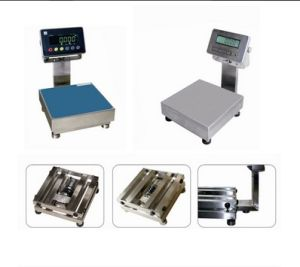 Digital Full Stainless Steel Waterproof Platform Scale Cw300 pictures & photos