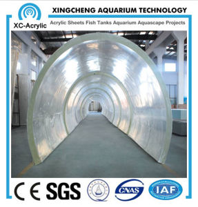 Customized Transparent Marine Oceanarium of Tunnel Oceanarium pictures & photos