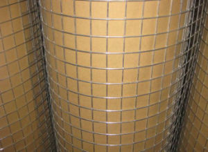 The Best Price Galvanized Welded Wire Mesh pictures & photos