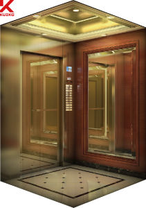 Hotel Lift with Center Opening Door pictures & photos