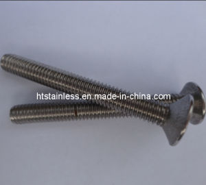 Socket Flat Head Screw DIN7991 Made by Duplex 2205 pictures & photos