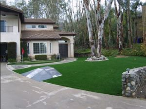 Synthetic Turf for Landscaping (TMS)