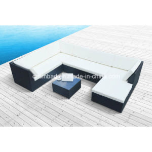 Outdoor Rattan Sofa for Garden / Living Room with Aluminum / SGS (1004) pictures & photos