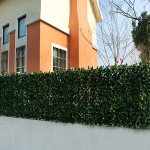 China garden wall covering plant outdoor hedges artificial for Outdoor wall coverings garden
