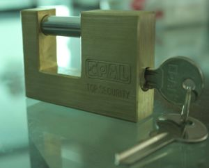 High Quality Rectanglar Brass Padlock Hardened Shackle (BX990) pictures & photos