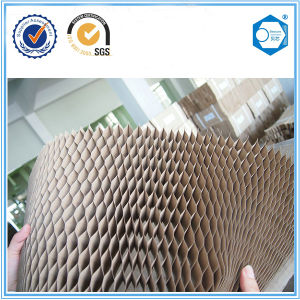 High Strength Paper Honeycomb for Door pictures & photos