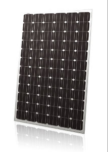 Yingli Brand High Quality Mono Solar Panel (SZYL-M310-36) pictures & photos