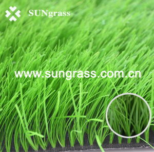 Synthetic Lawn Carpet for Sports or Basketball (JDS) pictures & photos