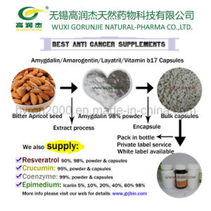 Anti Cancer Supplement Bitter Apricot seed extract amygdalin capsules pictures & photos