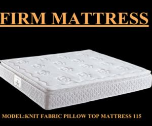 Greatest Pocket Coil 5 Star Hotel Anti Static Mattress (S115)