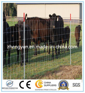 Cheap Hot Dipped Galvanized Cattle Fence/Field Fence pictures & photos