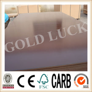 Qingdao Gold Luck Car Flooring Film Faced Plywood Panels (QDGL150115) pictures & photos
