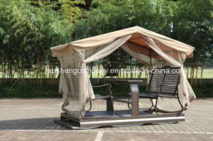 Hot Sell Outdoor Rattan Garden Patio Hanging Lover Swing Chair pictures & photos