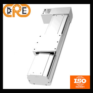 Best Selling and High Quality for Industrial Machines Linear Modules pictures & photos