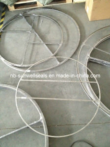 Spiral Wound Gasket with Bar pictures & photos