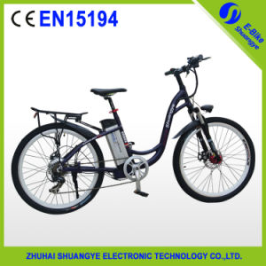 China Classical Model Electric Bike with 250W Motor pictures & photos