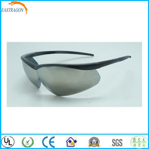 Safety Anti Fog for Goggles pictures & photos