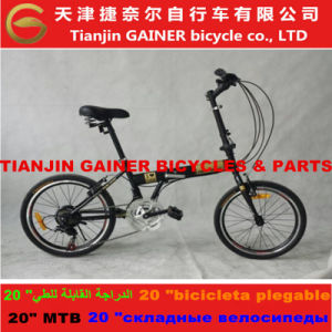 "Tianin Gainer 20"" Folding Bicycles 21sp Stable Quality pictures & photos"