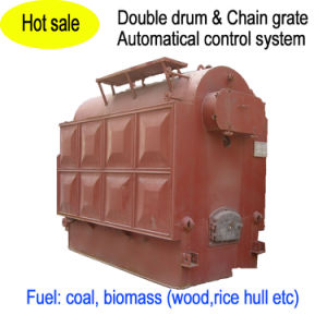 Double Drum Vertical Chain Grate Hot Water Boiler