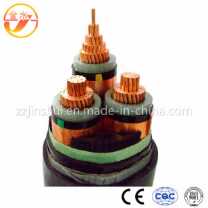Power/PVC/PE/XLPE/Copper/Insulated/Copper/Rubber Cable pictures & photos