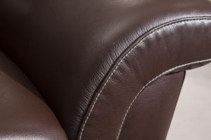 Living Room Leather Sofa Bed (657) pictures & photos