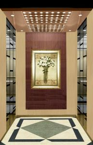 Fjzy-High Quality and Safety Passenger Elevator Fjk-1662 pictures & photos