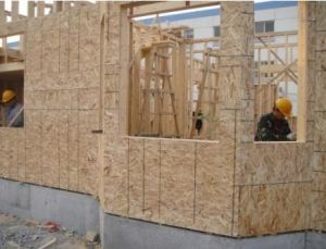 Melamine or Natural Veneer Directly Faced OSB Board pictures & photos