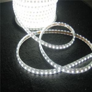 Hot Sale LED 5050 Flex Strip Light 220V