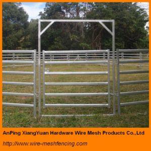Oval Rails Cattle Panels Livestock Yard Horse Panels Australia Standard pictures & photos