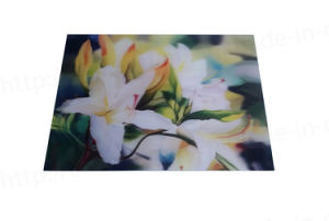 Lenticular greeting card (3D127) pictures & photos