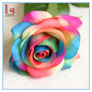 Valentine′s Day Gift Artificial Decorative Multicolor Rose Flowers pictures & photos