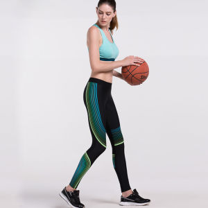 High Quality Women Leggings Fitness Bra Gym Wear pictures & photos