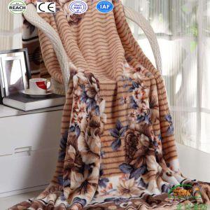 Printed Coral Fleece Blanket New Design 2017 pictures & photos
