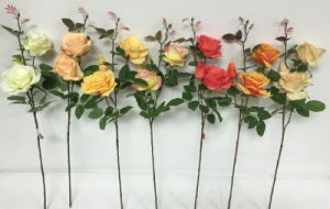 Rose 75cm Spray Gu0118135135 pictures & photos