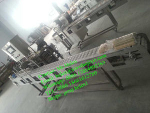 Large Meat Skewer Machine/ Kebab Making Machine/ Satay Skewer Machine pictures & photos