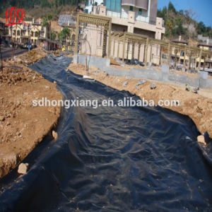 Geomembrane Waterproof pictures & photos