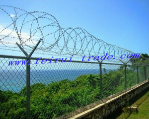 PVC Coated Chink Link Fence with T-Post for France Market pictures & photos